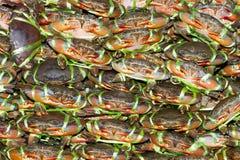 Límite de la carne de cangrejo Fotografía de archivo libre de regalías