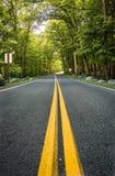 Línea amarilla de dos calles fotografía de archivo