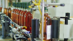 Línea automatizada del transportador en invernadero Ponga las etiquetas en las botellas de vino Automatización industrial almacen de metraje de vídeo