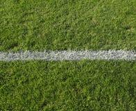 Línea blanca en hierba Imagenes de archivo