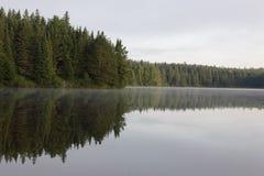 Línea de árbol del lago Pog Imagenes de archivo