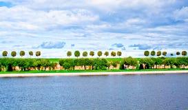 Línea de árboles Foto de archivo libre de regalías