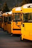 Línea de autobuses escolares Fotografía de archivo libre de regalías