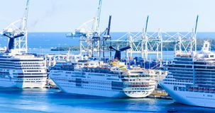 Línea de barcos de cruceros en Miami Imagen de archivo