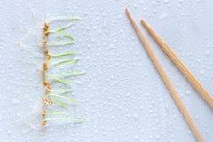Línea de brote del trigo y de palillos de madera en el fondo ligero w Imagen de archivo