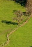 Línea de cerca en prado Foto de archivo libre de regalías