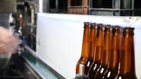 Línea de embotellamiento automática de la cerveza Cola de botellas llenadas listas en el transportador La mano del trabajador tom metrajes