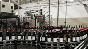 Línea de embotellamiento de vino en el movimiento metrajes