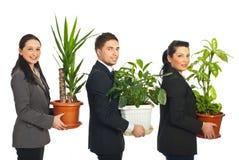 Línea de hombres de negocios que sostienen las plantas Imagen de archivo