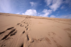 Línea de huellas encima de una colina del desierto Fotografía de archivo