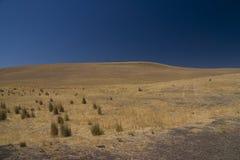 Línea de Idaho Imagen de archivo libre de regalías