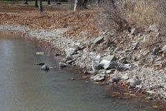 Línea de la orilla del lago con las rocas y las hojas dispersadas Imagen de archivo libre de regalías