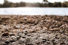 Línea de la orilla de un lago Imagenes de archivo
