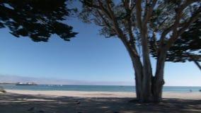 Línea de la playa de la bahía de Monterey almacen de video