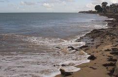 Línea de la playa con la playa, la alga marina y guijarros Imágenes de archivo libres de regalías