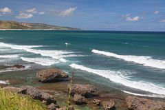 Línea de la playa de Bathsheba Imagen de archivo libre de regalías