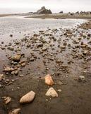 Línea de la playa de Oregon Fotografía de archivo