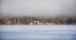 línea de la playa debajo de la niebla en el horizonte, subiendo del río de Ottawa Fotos de archivo