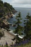 Línea de la playa del bretón del cabo Foto de archivo libre de regalías
