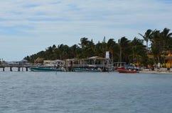 Línea de la playa en el calafate de Caye imágenes de archivo libres de regalías