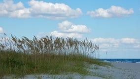 Línea de la playa en Myrtle Beach Fotografía de archivo