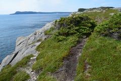 Línea de la playa escénica en el padre Troy East Coast Trail fotografía de archivo libre de regalías
