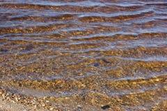 Línea de la playa limpia chispeante del lago maine con las rocas que muestran con pureza del agua foto de archivo libre de regalías