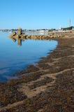 Línea de la playa que muestra Provincetown Massachusetts Fotos de archivo libres de regalías