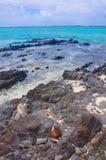 Línea de la playa rocosa Fotos de archivo libres de regalías