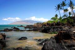 Línea de la playa rocosa con la palmera Fotografía de archivo libre de regalías