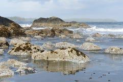 Línea de la playa rugosa de la playa de Chesterman, Tofino, Columbia Británica, Canadá Fotografía de archivo libre de regalías