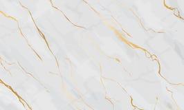 Línea de mármol y de oro illustrati de la textura del arte del vector del fondo Fotografía de archivo libre de regalías