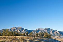 Línea de pinos antes de montañas grandes distantes foto de archivo libre de regalías