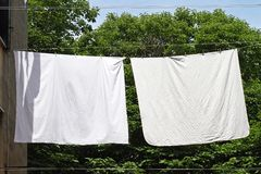 Línea de ropa Foto de archivo libre de regalías