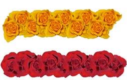 Línea de rosas. Fotografía de archivo libre de regalías