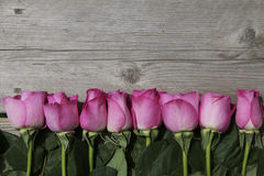 Línea de rosas rosadas en un fondo de madera foto de archivo libre de regalías