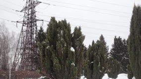 LÍNEA de TRANSMISIÓN línea eléctrica en un parque con los árboles verdes almacen de metraje de vídeo