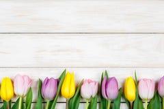 Línea de tulipanes rosados y amarillos que mienten en un backgroun de madera blanco Imagen de archivo