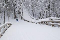 Línea del esquí imagen de archivo