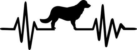 Línea del latido del corazón del perro con golden retriever ilustración del vector