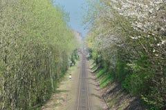 Línea del tren Fotografía de archivo
