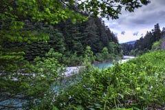 Línea divisoria de las aguas del río de la anguila Foto de archivo libre de regalías