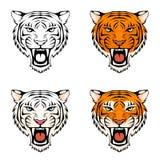 Línea ejemplo de una cabeza de rugido del tigre Fotografía de archivo libre de regalías
