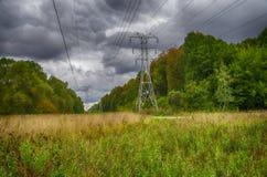 Línea eléctrica en el bosque Fotografía de archivo
