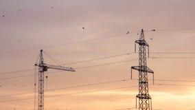 Línea eléctrica, grúa de construcción y pájaros con el cielo colorido cremoso por la mañana almacen de metraje de vídeo