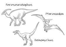 Línea fina ejemplos del estilo del grabado, diversas clases de dinosaurios prehistóricos, incluye el parasaurolophus, pteranodon Ilustración del Vector