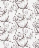 Línea floral arte de la tarjeta de las rosas del vintage Fondo hermoso estilos del gráfico del dibujo de la mano libre illustration