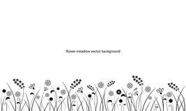 Línea frontera del prado de la flor en blanco Foto de archivo