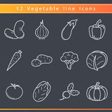 Línea iconos de las verduras Imágenes de archivo libres de regalías