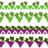 Línea inconsútil de la fruta del vector Conjunto de los elementos para el diseño ilustración del vector